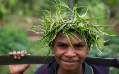 A Case for Low-Cost, Renewable Green Energy to Power Up Papua New Guinea