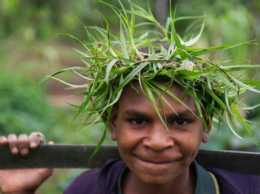 Management Consulting, Papau New Guinea, International Development, Renewable Energy