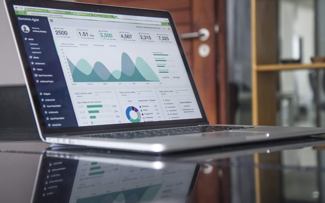 The Use of Business Intelligence Tools to Optimize Organizational Performance